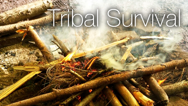 Tribal Survival